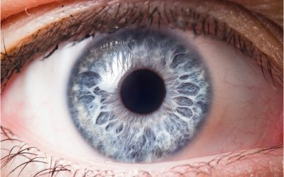 Top 10 tips for eye-care